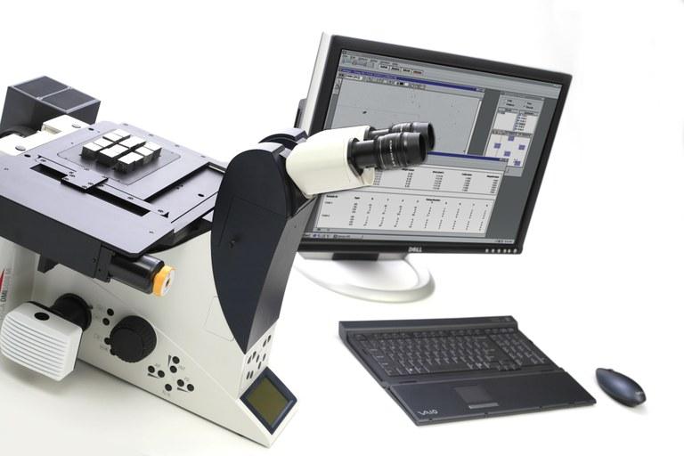 Microscopía y Análisis de Imagen